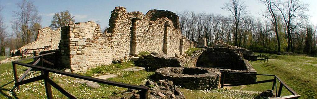 La storia degli scavi a Castelseprio, le schede degli edifici conservati, il Castrum, il Borgo e Torba...
