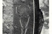 Tombe di San Giovanni - tomba n° 5